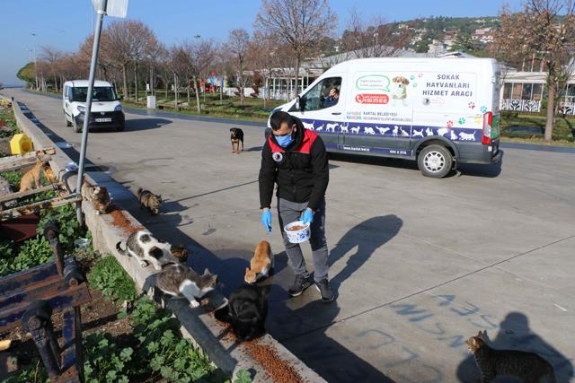 2021/01/1609833844_kartal_belediyesi,_4_guenluek_kisitlamada_sokak_hayvanlarini_unutmadi_(6).jpg
