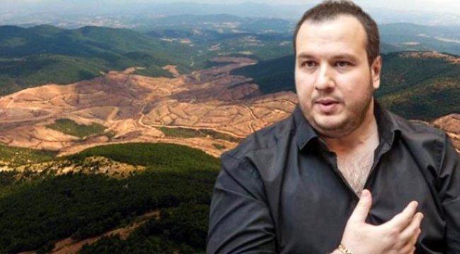 Şahan Gökbakar, Kazdağları'nda kesilen ağaçlardan dolayı Tarım ve Orman Bakanlığı'na isyan etti