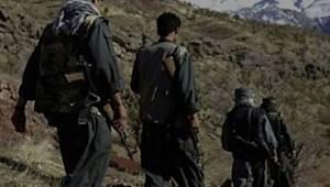 Terör örgütü PKK'da 'şimdi sıra kimde' korkusu