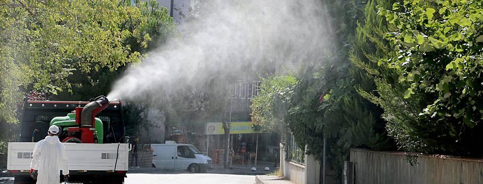 Kartal Belediyesi biyolojik mücadele başlattı