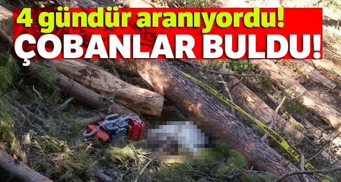 Kestiği ağacın altında kaldı, cesedi 4 gün sonra bulundu