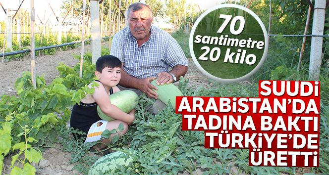 Suudi Arabistan'da tadına baktı Türkiye'de üretti