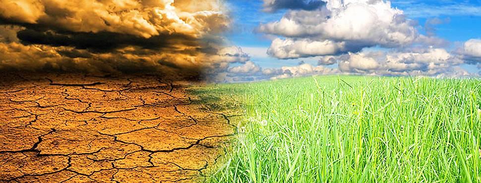 İklim Krizi İstanbul'u Vurdu!