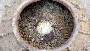 Çin'de pirinç dolu bir küpün içine gömülmüş en az 500 yıllık olduğu tahmin edilen yumurtalar bulundu