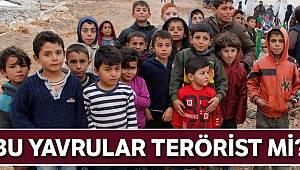 1 yaşındaki çocuğa terörist denilir mi?