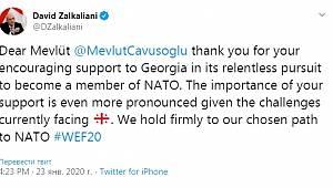 Gürcistan Dışişleri Bakanı, Çavuşoğlu'na teşekkür etti