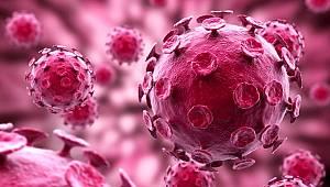 SARS virüsü nedir? SARS coronavirüsü tedavisi nedir? SARS hastalığı belirtileri
