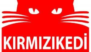 Kırmızı Kedi Kitabevi'nden koronavirüs kararı