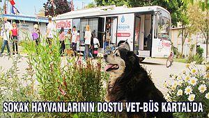 Sokak Hayvanlarının Dostu VET-BÜS Kartal'da