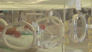 Tüp Bebek Tedavileri Askıya Alındı