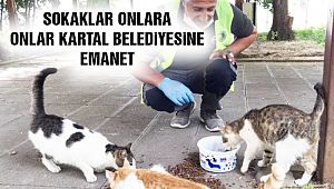 Kartal Belediyesi Sevimli Dostları Unutmadı!