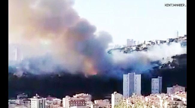 Maltepe'de Orman Yangını!