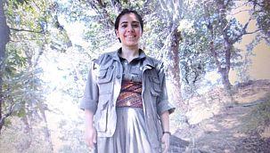 Teröristin sağ kolu Diyarbakır barosu avukatı çıktı