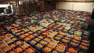 Türkiye'nin meyve ve sebze ihracatının son durumu