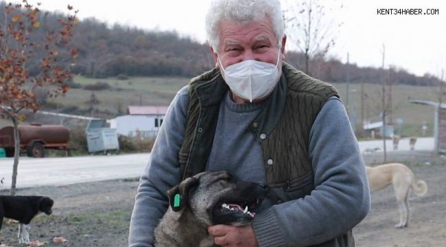 71 yaşında veterinerlik okudu
