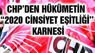 CHP'den Hükümetin ''2020 Cinsiyet Eşitliği'' Karnesi