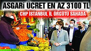 CHP İstanbul İl Örgütü Sahaya İndi