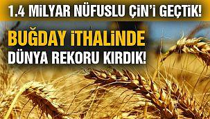 Türkiye, Çin'den Daha Fazla Buğday İthal Etti
