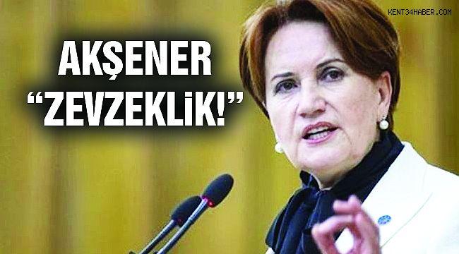 """Akşener'den Bildiri Açıklaması : """"Zevzeklik'"""""""