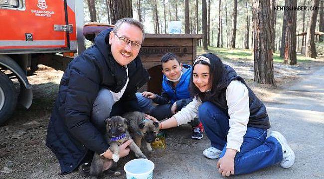 Başkan Kartoğlu İki Yavru Sokak Köpeğini Sahiplendi