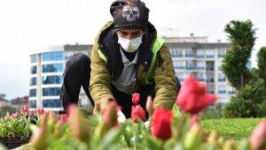 """""""Tuzla'da Kişi Başına Düşen Yeşil Alan Sayısı Ortalamanın Üstünde"""""""