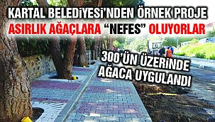 Kartal Belediyesi Asırlık Ağaçlara 'Nefes Borusu' ile Can Veriyor