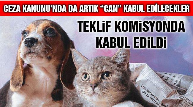 Hayvanları Koruma Kanunu, TBMM Komisyonu'nda Kabul Edildi